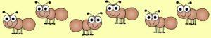 ant row